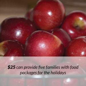 Holiday Food Baskets Donate Button